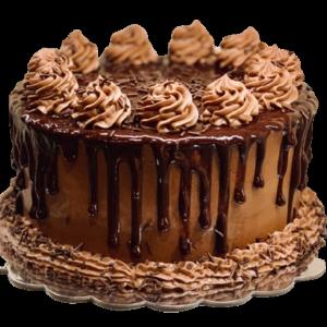 Fondant-Fountain-Chocolate Truffle Cake