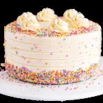 Fondant-Fountain-Vanilla-Cake